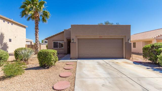 16269 W Lupine Avenue, Goodyear, AZ 85338 (MLS #5931237) :: The Luna Team