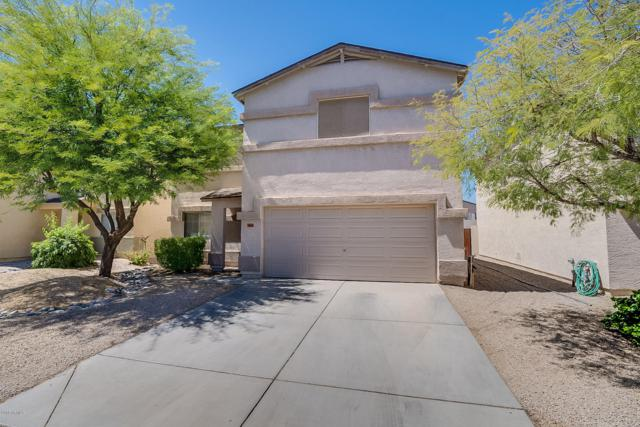 1664 E Silktassel Trail, San Tan Valley, AZ 85143 (MLS #5931244) :: The Everest Team at My Home Group