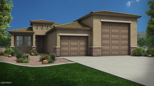 18228 W Tina Lane, Surprise, AZ 85387 (MLS #5931263) :: The Garcia Group