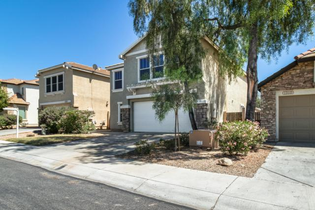 13445 W Rhine Lane, Litchfield Park, AZ 85340 (MLS #5931268) :: The Luna Team