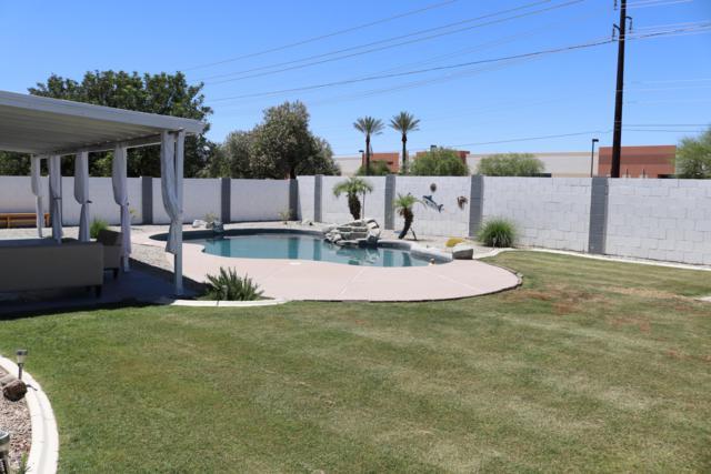 9830 N 90TH Lane, Peoria, AZ 85345 (MLS #5931280) :: Riddle Realty