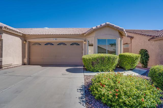 6610 E University Drive #82, Mesa, AZ 85205 (MLS #5931307) :: Team Wilson Real Estate