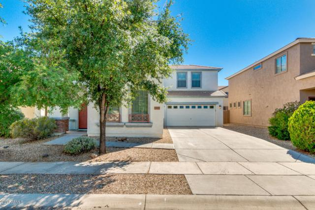 15102 N 173RD Drive, Surprise, AZ 85388 (MLS #5931329) :: Kepple Real Estate Group