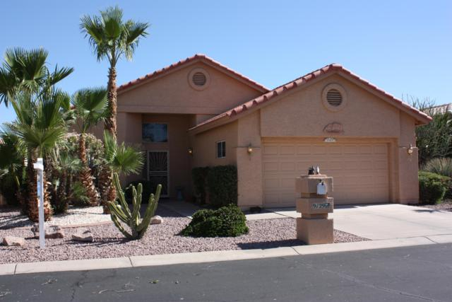 9129 E Emerald Drive, Sun Lakes, AZ 85248 (MLS #5931342) :: Riddle Realty