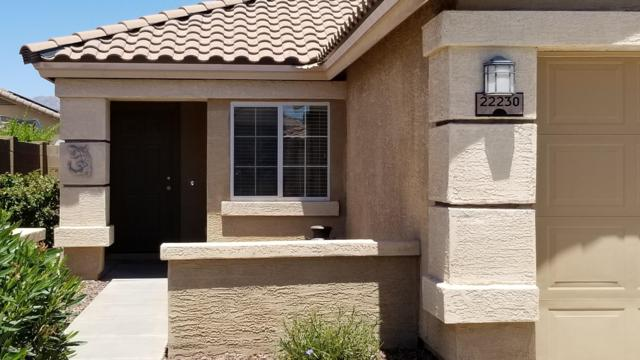 22230 W Hadley Street, Buckeye, AZ 85326 (MLS #5931345) :: The W Group
