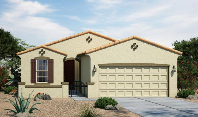 7821 S 23RD Way, Phoenix, AZ 85042 (MLS #5931360) :: CC & Co. Real Estate Team