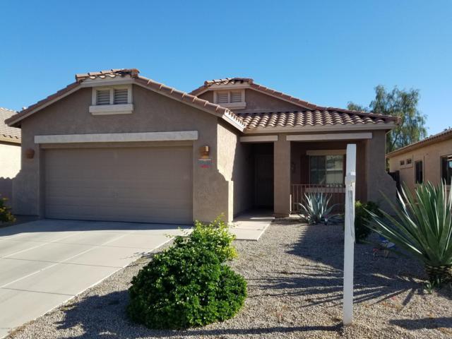 17229 W Saguaro Lane, Surprise, AZ 85388 (MLS #5931362) :: Kepple Real Estate Group