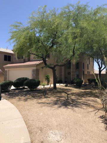 5123 E Roberta Drive, Cave Creek, AZ 85331 (MLS #5931371) :: Riddle Realty