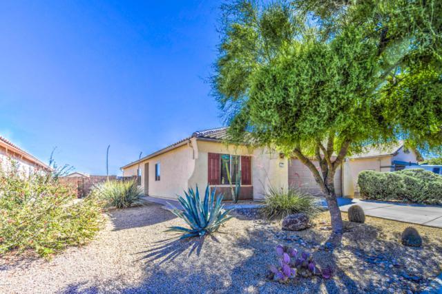 10559 E Hillside Mine Court, Gold Canyon, AZ 85118 (MLS #5931372) :: Keller Williams Realty Phoenix