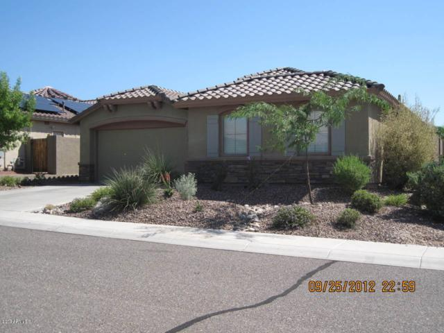 2345 W Memorial Court, Phoenix, AZ 85086 (MLS #5931373) :: Yost Realty Group at RE/MAX Casa Grande