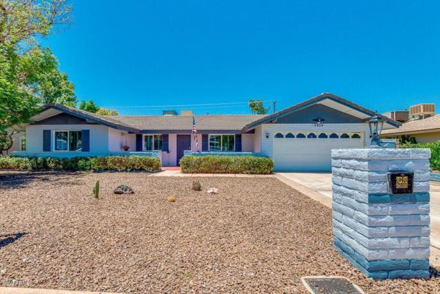 2904 S Terrace Road, Tempe, AZ 85282 (MLS #5931383) :: HOMM