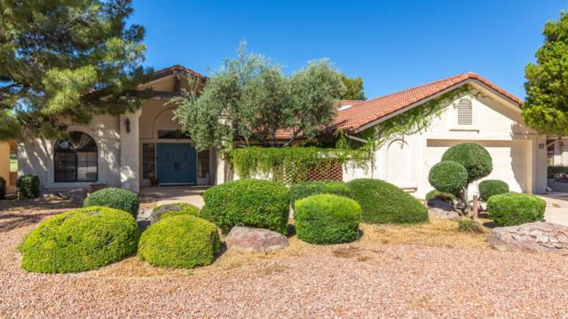 13723 W Aleppo Drive, Sun City West, AZ 85375 (MLS #5931388) :: Riddle Realty