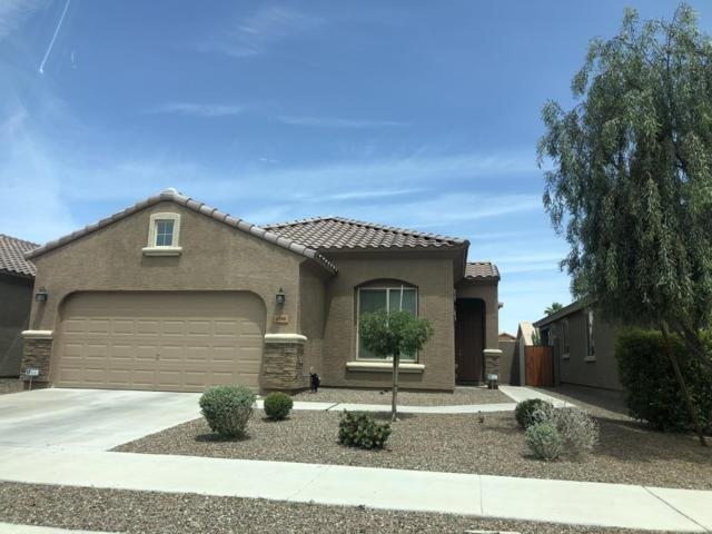 6748 W Charter Oak Road, Peoria, AZ 85381 (MLS #5931412) :: Riddle Realty