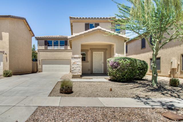 18536 W Douglas Way, Surprise, AZ 85374 (MLS #5931415) :: Kepple Real Estate Group