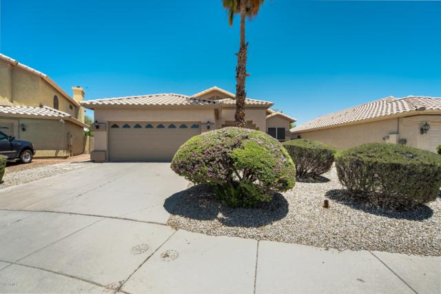 14405 S 46TH Street, Phoenix, AZ 85044 (MLS #5931432) :: Kepple Real Estate Group