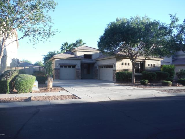 423 W Pelican Drive, Chandler, AZ 85286 (MLS #5931437) :: Keller Williams Realty Phoenix