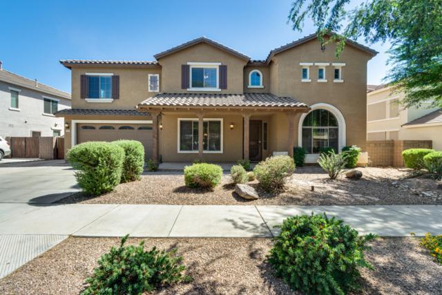 18953 E Raven Drive, Queen Creek, AZ 85142 (MLS #5931443) :: CC & Co. Real Estate Team