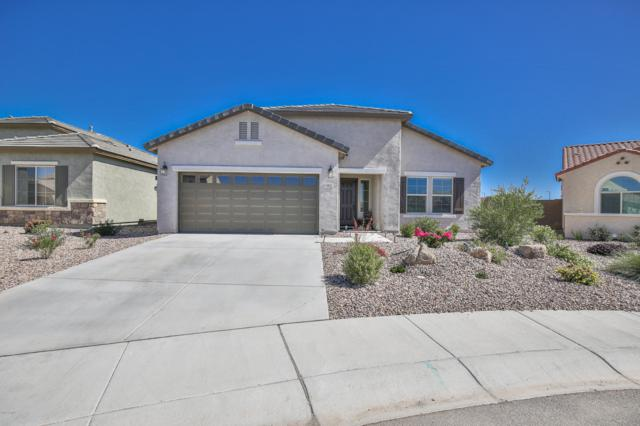 6862 W Sonoma Way, Florence, AZ 85132 (MLS #5931458) :: The Pete Dijkstra Team