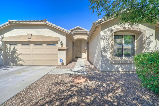 6808 N 72ND Drive, Glendale, AZ 85303 (MLS #5931464) :: Keller Williams Realty Phoenix
