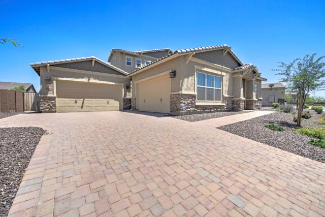 25537 N 102ND Drive, Peoria, AZ 85383 (MLS #5931468) :: Riddle Realty