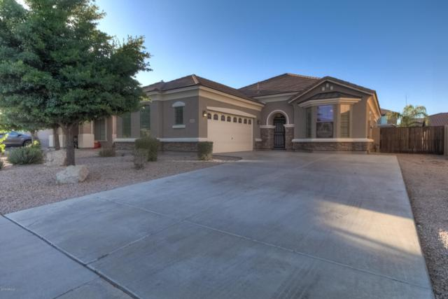 2866 E Sports Court, Gilbert, AZ 85298 (MLS #5931472) :: HOMM
