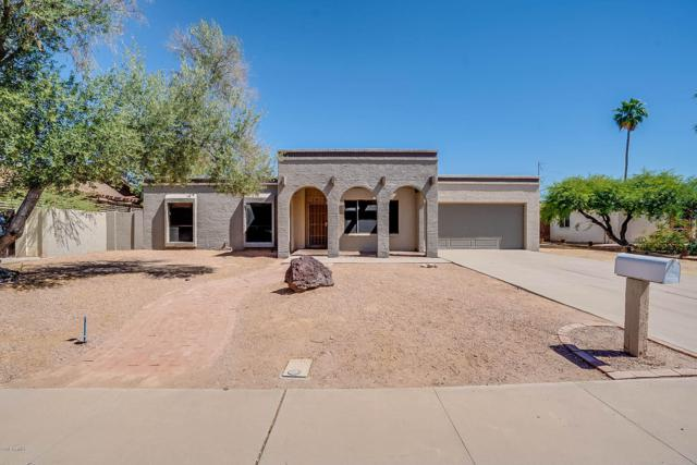 1806 W Rosewood Court, Chandler, AZ 85224 (MLS #5931481) :: CC & Co. Real Estate Team