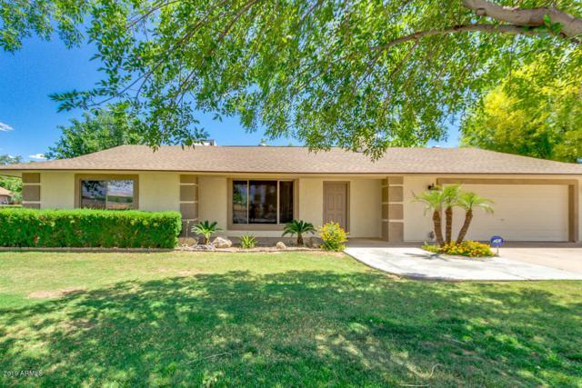 13027 W Wolfley Drive, El Mirage, AZ 85335 (MLS #5931507) :: Riddle Realty