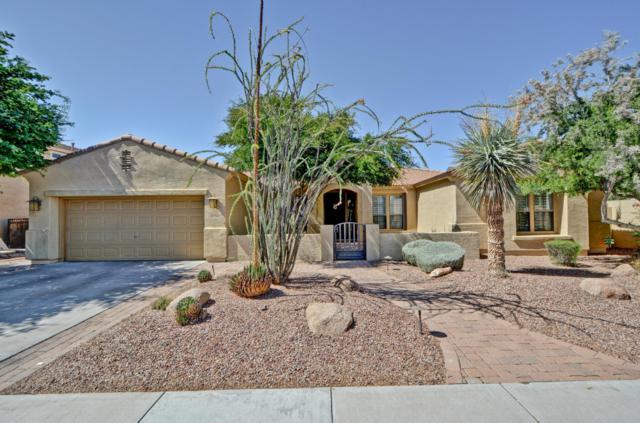 5704 W Robb Lane, Glendale, AZ 85310 (MLS #5931515) :: Riddle Realty
