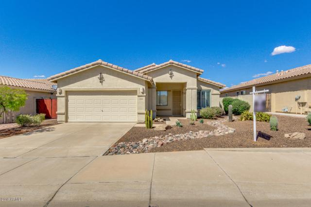10101 S 183RD Lane, Goodyear, AZ 85338 (MLS #5931533) :: The Luna Team