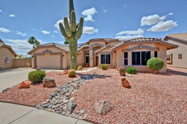 9032 W Kerry Lane, Peoria, AZ 85382 (MLS #5931575) :: Riddle Realty