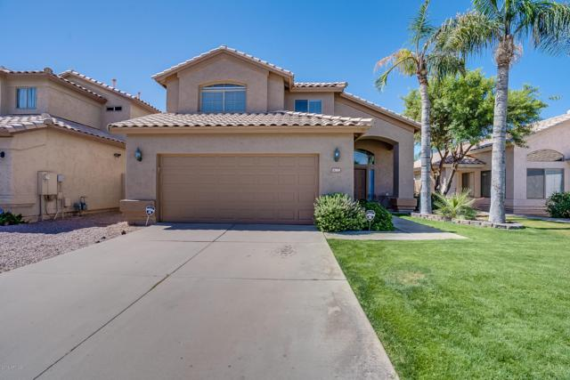 1709 E Tremaine Avenue, Gilbert, AZ 85234 (MLS #5931576) :: Riddle Realty