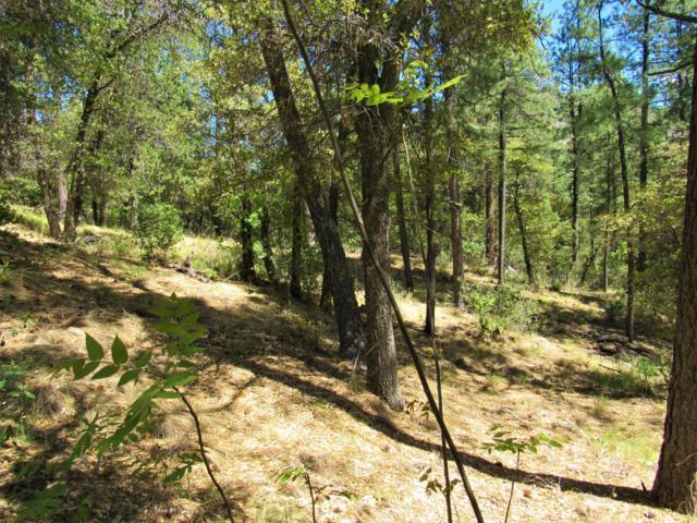 23079 S Gladiator Mine Road, Crown King, AZ 86343 (MLS #5931631) :: Conway Real Estate