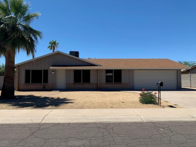 1733 W Charleston Avenue, Phoenix, AZ 85023 (MLS #5931863) :: Revelation Real Estate