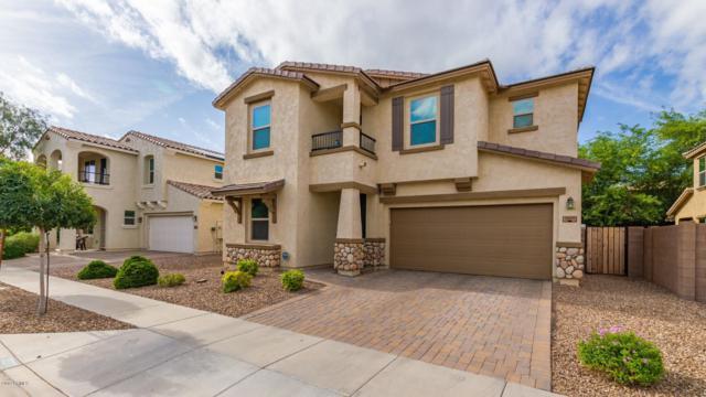 3077 E Franklin Avenue, Gilbert, AZ 85295 (MLS #5931872) :: Revelation Real Estate