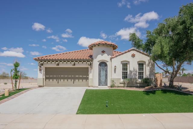 3810 N 295TH Avenue, Buckeye, AZ 85396 (MLS #5931889) :: Scott Gaertner Group