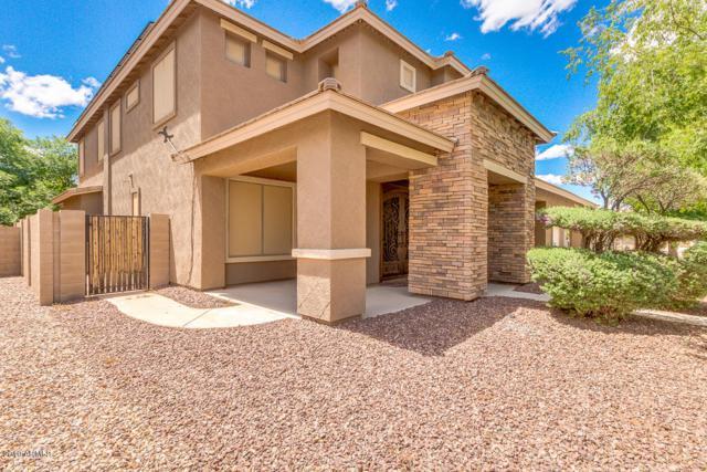 4164 S Roger Way, Chandler, AZ 85249 (MLS #5931918) :: The Daniel Montez Real Estate Group