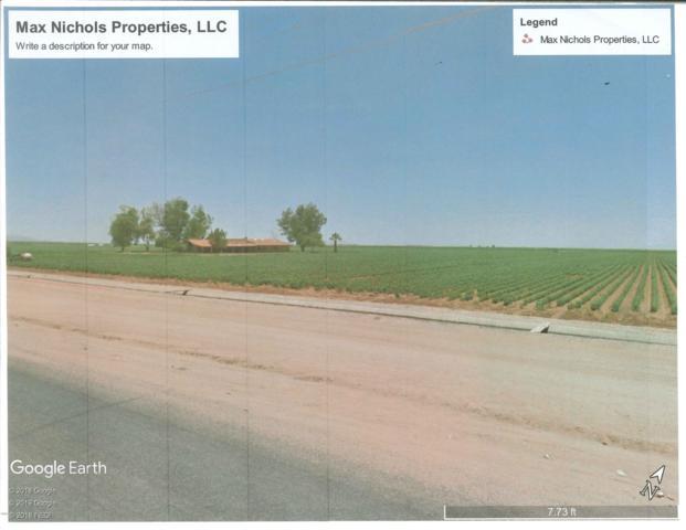 8978 E Milligan Road, Eloy, AZ 85131 (MLS #5931935) :: Brett Tanner Home Selling Team
