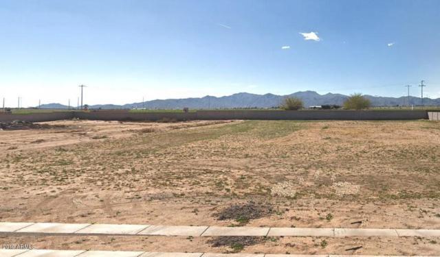 10112 N 162nd Lane N, Waddell, AZ 85355 (MLS #5931936) :: The Carin Nguyen Team