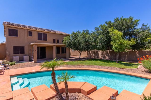 3423 S 73RD Lane, Phoenix, AZ 85043 (MLS #5931975) :: Riddle Realty