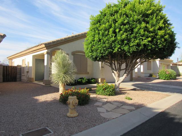 5858 E Nora Street, Mesa, AZ 85215 (MLS #5932098) :: The Results Group