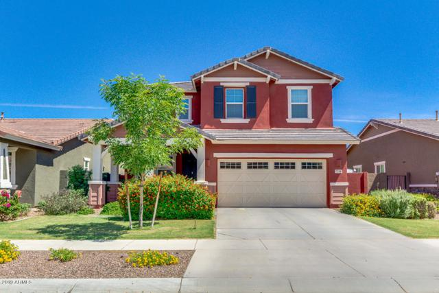 7216 E Olla Avenue, Mesa, AZ 85212 (MLS #5932276) :: The Pete Dijkstra Team