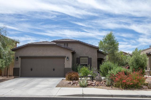 10839 W Cottontail Lane, Peoria, AZ 85383 (MLS #5932331) :: The Kenny Klaus Team