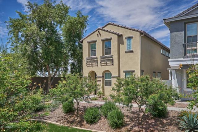 4591 S Felix Place, Chandler, AZ 85248 (MLS #5932430) :: The Daniel Montez Real Estate Group