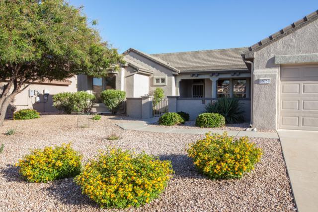 15757 W Cimarron Drive, Surprise, AZ 85374 (MLS #5932433) :: The Bill and Cindy Flowers Team