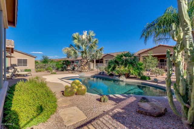 42197 W Baccarat Drive, Maricopa, AZ 85138 (MLS #5932538) :: Revelation Real Estate