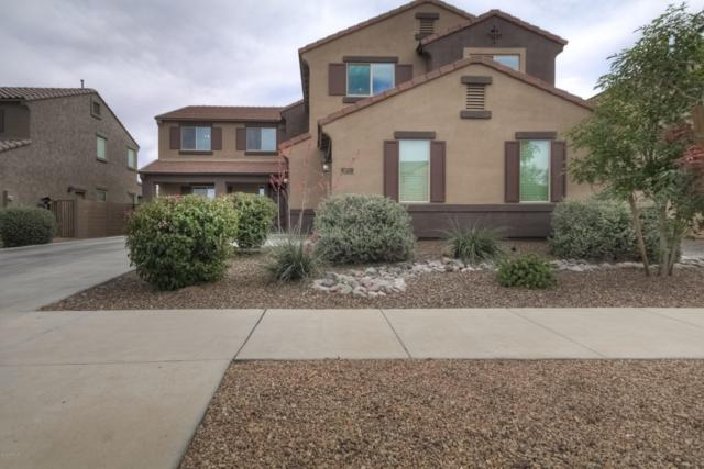 22317 E Via Del Oro, Queen Creek, AZ 85142 (MLS #5932627) :: Revelation Real Estate