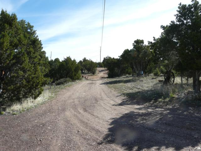 3650 Green Forest Drive, Overgaard, AZ 85933 (MLS #5932680) :: The Kenny Klaus Team