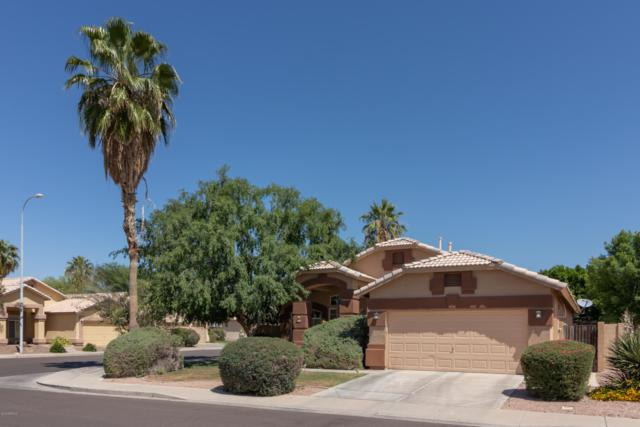4960 W Flint Street, Chandler, AZ 85226 (MLS #5932714) :: Revelation Real Estate