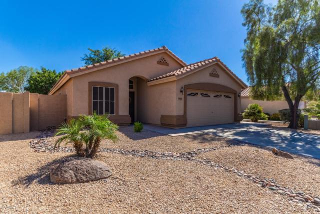 7021 W Aire Libre Avenue, Peoria, AZ 85382 (MLS #5932804) :: The Laughton Team
