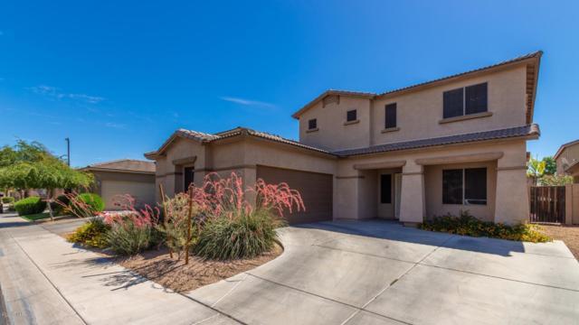 1065 S Fargo Street, Chandler, AZ 85286 (MLS #5932829) :: CC & Co. Real Estate Team